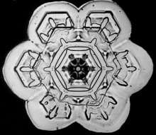 Wilson Bentley Snowflake1
