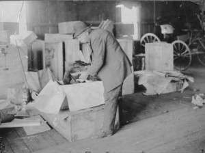 Horace Vose of Westerly, R.I., shipping a turkey to President Theodore Roosevelt for Thanksgiving. Photo courtesy Theodore Roosevelt Collection, Houghton Library, Harvard University.