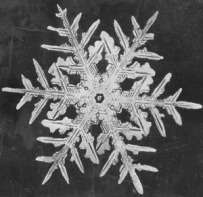 wilson bentley snowflake2