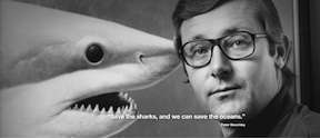 Peter Benchley, Jaws author