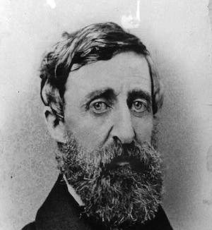 thoreau-portrait