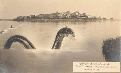 Ipswich Sea Serpent