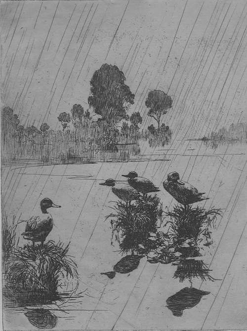 Ducks in the Rain, 1918