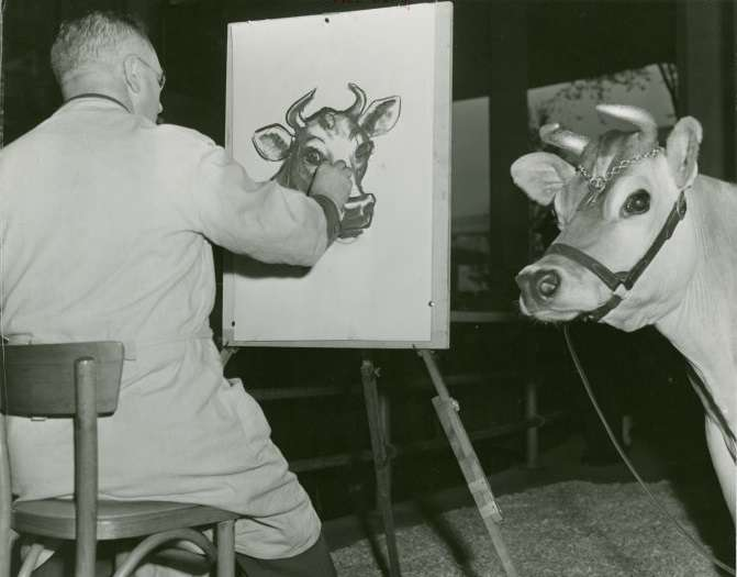 Elsie the Cow has her portrait made at the 1939 World's Fair (New York Public Library)