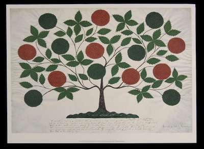 mother-ann's-works-tree-of-life
