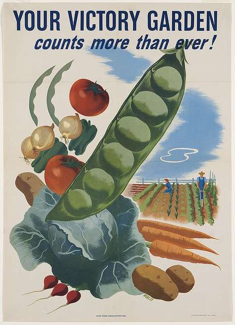 U.S. government poster promoting victory gardens