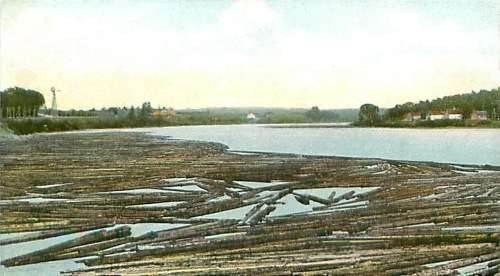 A log drive on the Penobscot near Bangor