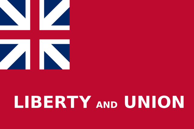 The Taunton Flag