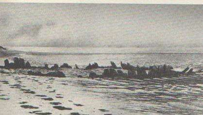 1886 photo of the exposed wreck of the Somerset