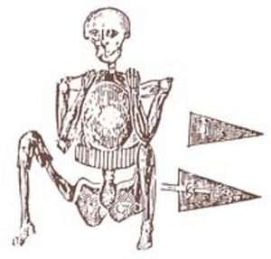 Sketch of the Fall River skeleton in armor.