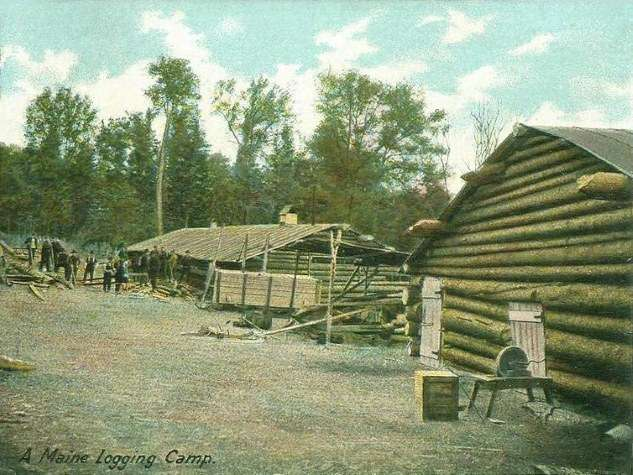 Maine logging camp, 1906