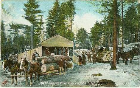 Maine lumber camp and sawmill