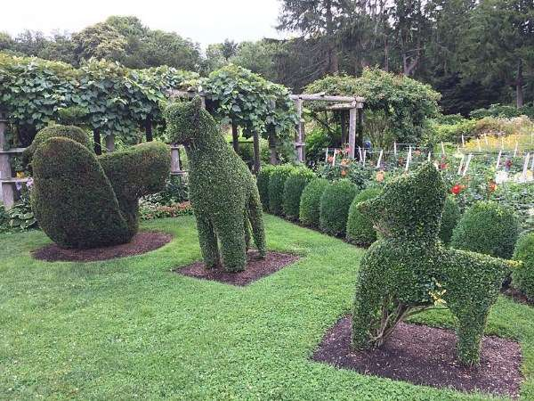 historic-gardens-green-animals