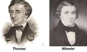 thoreau-wheeler
