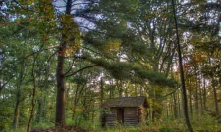 wheeler-thoreau-shanty